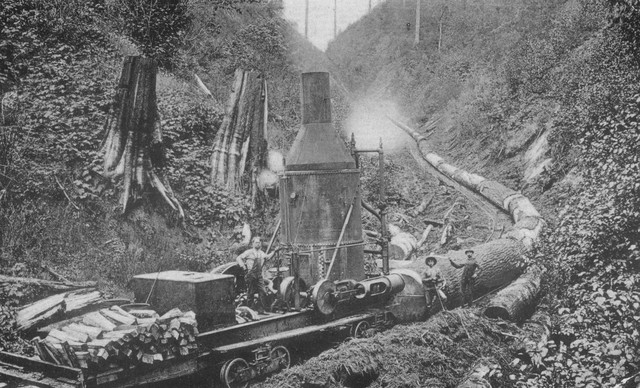 """The worker aboard this train coming down OK Creek near Marshland is operating a modified steam donkey called a Gripwheel. The Gripwheel was a piece of logging machinery which performed cable yarding, skidding and other tasks of a standard stationary donkey. But the Gripwheel, mounted on a railcar, could also pull itself along railroad tracks by """"gripping"""" a stationary cable alongside the tracks. Photo ca. early 1900s."""