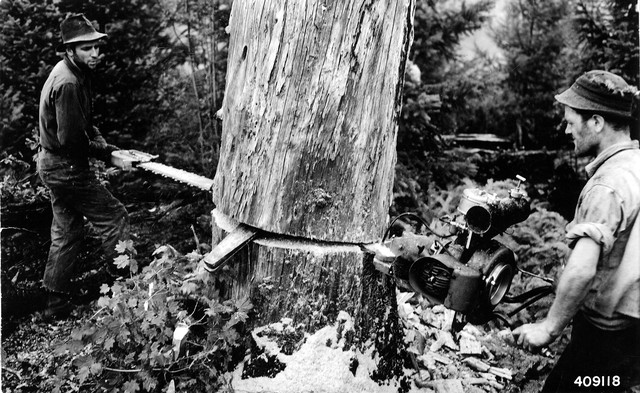Two-man chainsaws only enjoyed a brief window of popularity before lighter, easier-to-use one-man models came along.