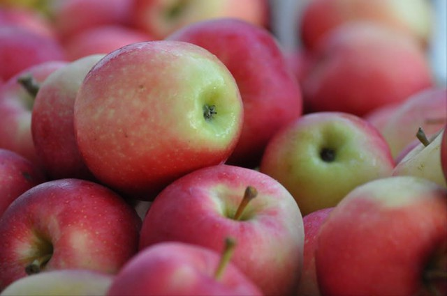 A pile of ripe apples