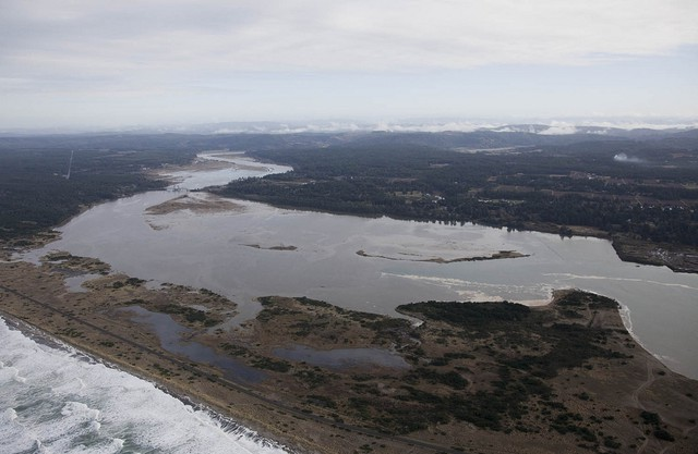 A restoration project in the Bandon Marsh National Wildlife Refuge added habitat for salmon and shorebirds but also created new breeding grounds for mosquitoes.