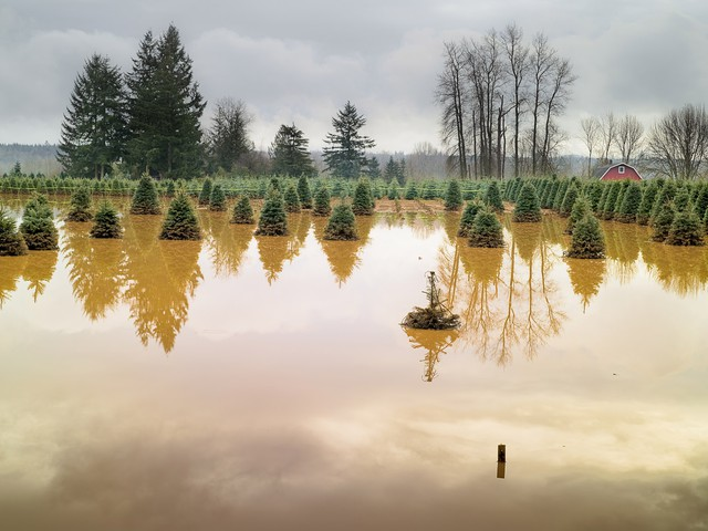 A photograph by Steve Davis, 'Near Rochester,' part of the city of Seattle's 'Atmospheric Weather' exhibit on view through the end of the month.