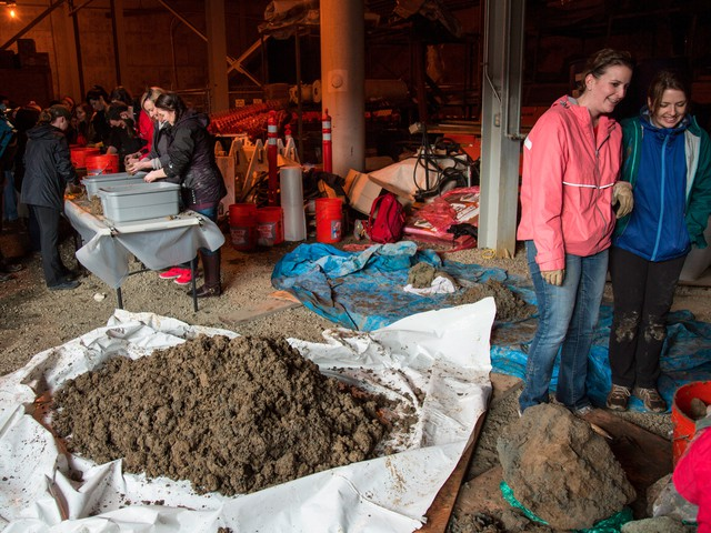 Students are digging through small piles of dirt to find any remaining mammoth bone fragments left behind after the initial excavation.