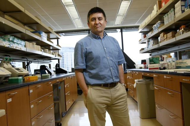 Shoukhrat Mitalipov, Ph.D., prinicipal investigator for the Center for Embryonic Cell and Gene Therapy at OHSU.