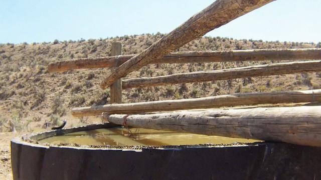 Cow tank along the Oregon Desert Trail.