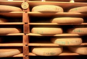 Comte cheese matures ina cellar.
