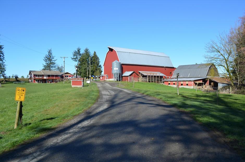 Whatcom County dairy farmer Steve Groen's barn was built back in 1917. He's a third-generation dairy farmer.